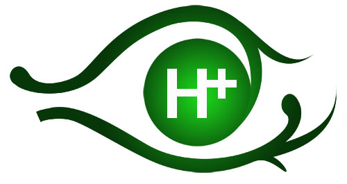 logo-H+D2