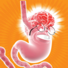 Faudra-t-il aussi simuler les relations cerveau/intestins ?